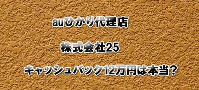 auひかり代理店25