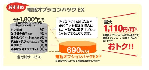auひかり電話 電話オプションパックEX